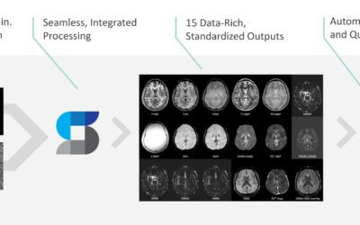 Clinical applications of STAGE published in the journal Magnetic Resonance Imaging